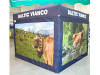 Komercio teltis, Baltic Vianco
